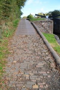 Canal walk 20.10 (25)